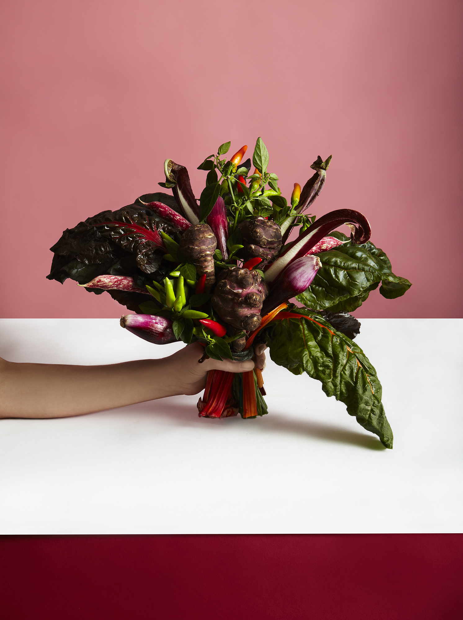 katie hammond love veg wild and red still life food photography